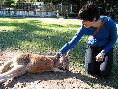[Elena with a kangaroo at Lone Pine]